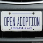 open adoption advocate
